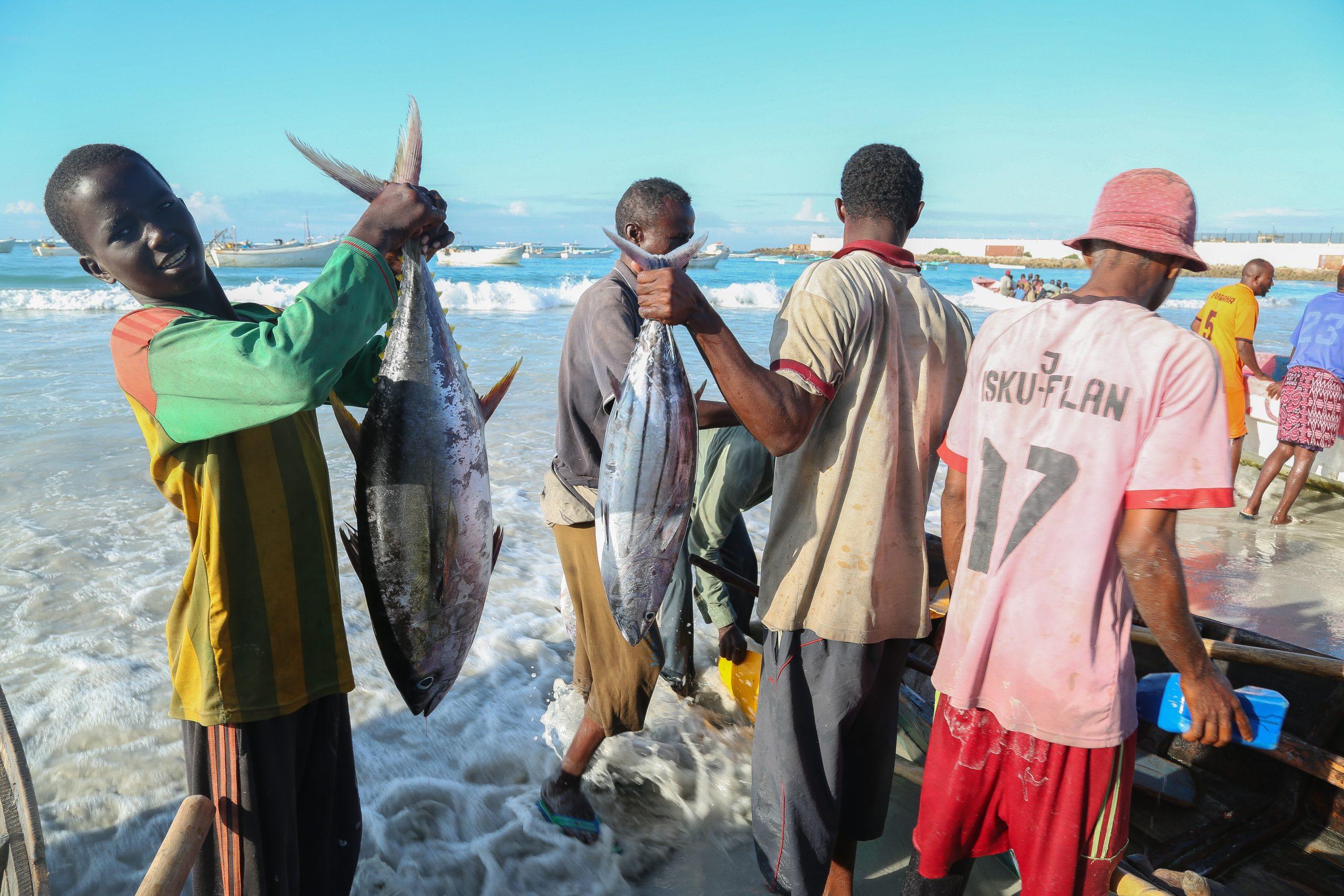 Somali Fisheries